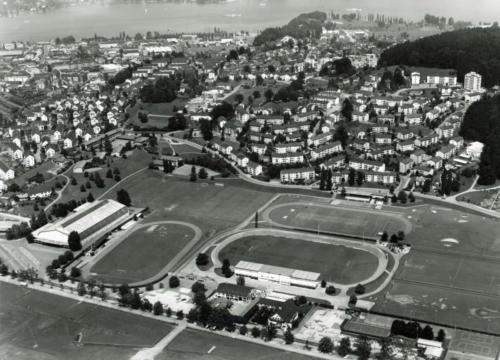 Flugaufnahme des Biregg-Auertiers und der Luzerner Allmend, 1964