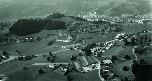 berrütihang, Bachtel, Felmis; im Hintergrund Grämlis- und Längacherwald, 1973